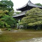 6月28日・「沙羅双樹の鹿王院を訪ねる」へのお誘い