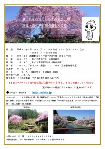 いきなり春!京北の枝垂れ桜を観に行きましょう。