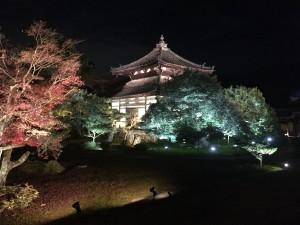 第2回「鹿王院夜間特別拝観」に行ってきました。
